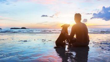Welcher Hund passt zu Ihrem Sternzeichen?